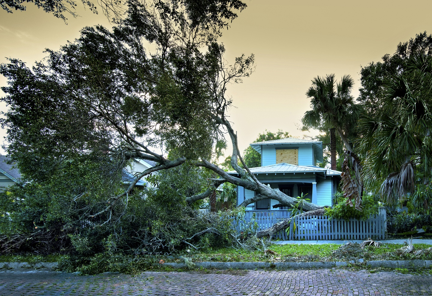 Are More Hurricanes Driving Up the Price of Home Insurance?